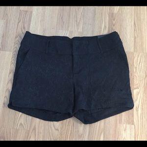 Shorts - Torrid Black Jacquard Short Shorts Halloween?
